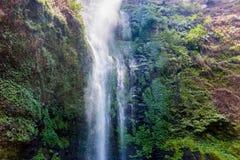 Coban Rondo Waterfall Royalty-vrije Stock Fotografie