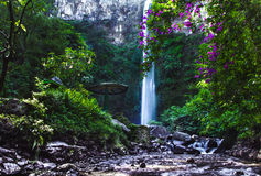 Coban Rondo Waterfall arkivbilder