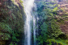 Coban Rondo waterfall. Located 32km from Malang Indonesia along the slope of Mount Panderman Resort.  It has a height of 84 metres Royalty Free Stock Photography
