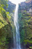 Coban Rondo waterfall Royalty Free Stock Photos