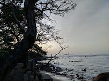 Cobanos Playa los Lizenzfreies Stockfoto