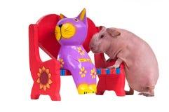 Cobaye avec le jouet de chat se reposant sur le banc Photo libre de droits