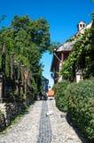 Cobbed街道在Sighisoara,罗马尼亚 免版税库存照片