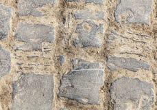 Cobbelstone路细节 库存图片