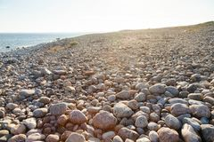 Cobble deposit at Molen UNESCO Global Geopark Larvik Vestfold No stock image
