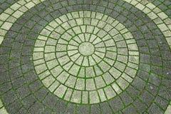 Cobble el modelo redondo del camino de un pavimento de piedra de la calle fotografía de archivo