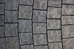 Cobble, Paving stone Royalty Free Stock Image