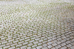 Cobble steenbestrating Stock Foto
