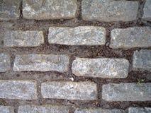 Cobble steenweg royalty-vrije stock foto's