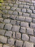 Cobble Stenen Stock Foto