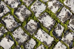 Cobble stone Stock Photography