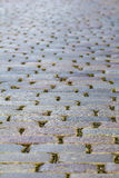 Cobble-stone bestrating Royalty-vrije Stock Foto
