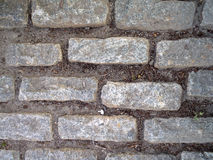 Cobble stone path. Looking down at Gray Cobble stone path with bits of dirt royalty free stock photos