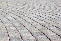 Cobble stone pavement. Grey cobble stones laid in curve, selective focus royalty free stock photo
