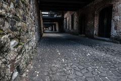 Cobble Stone Streets. In Savannah Georgia. Green Moss crawling up the walls stock photos
