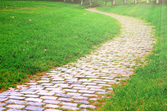 Cobble stone walk way in the park and some green grass beside. Empty copy space for Editor`s text. Royalty Free Stock Photography