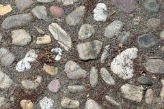 Cobble Stones Stock Photography