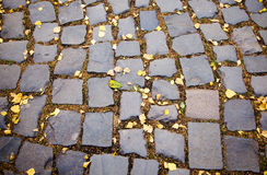 Cobble-stones road Stock Image