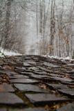 cobbled путь Стоковая Фотография