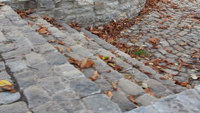 Cobbled alley Royalty Free Stock Photos