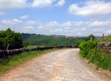 A cobbled country lane curving downhill into the distant wooded valley surrounded by dry stone walls and green fields. With a bright blue summer sky with clouds royalty free stock photography