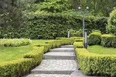 Cobbled klev slingan i ett härligt parkerar inramat av klippta buskar royaltyfria foton