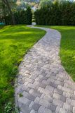Cobbled path on the background of a hedge of tui