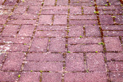 Cobbled path Stock Photo
