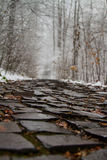Cobbled path Royalty Free Stock Photos