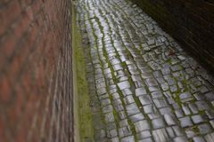 Cobbled Path Royalty Free Stock Images