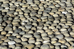 Cobbled paving (rizzada) Royalty Free Stock Photo
