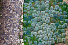 Cobbled Road and Green Plants. Pattern in Sab Giorgio Castle in Lisbon, Portugal Royalty Free Stock Photos