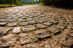 Cobbled road. Receding into the distance, illuminated by the sun Royalty Free Stock Image