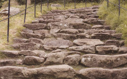 Cobbled stairs Stock Image