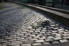 Cobbled Stone Walkway Royalty Free Stock Photo