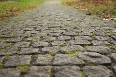 Cobbled Stones Road. Old Gray Cobbled Stones Road closeup view Royalty Free Stock Image