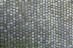 Cobbled Stones Texture. Old Cobbled Stones Road Texture Close up with Autumn Leaves and Green Grass royalty free stock images