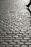 Cobbled street. Foot silhouette crossing a cobbled street royalty free stock image