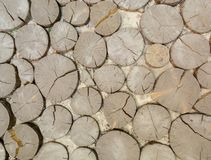 Cobbled with wood, a road or a path. Natural background. Stock Photo