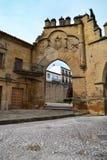 Cobbledstraat van een dorp Royalty-vrije Stock Afbeeldingen