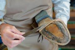 Cobbler mending sole shoe. Cobbler mending sole of shoe Royalty Free Stock Image