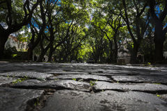 Cobbles Μπουένος Άιρες στοκ εικόνες