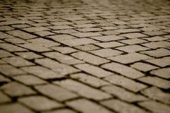 Cobbles στη γέφυρα του Charles σε γραπτό Στοκ Εικόνες