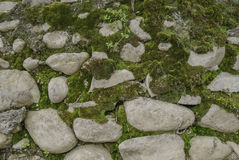 The cobbles in the grass. Backdrop Royalty Free Stock Images