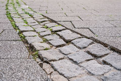 Cobbles with grass Stock Photo