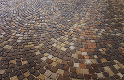 Cobbles, is laid out on the sidewalk the rings, geometry Royalty Free Stock Photos