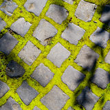 Cobbles with moss Stock Photo