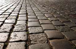 Cobbles on the pavement lit by the sun Stock Photos