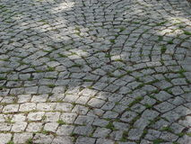 Cobblestone. Cobbled place with light and shadow of a tree Stock Photography