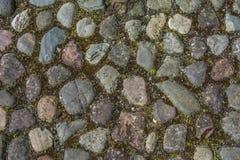 cobblestone Fotografie Stock